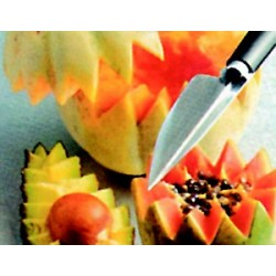 Couteau décofruit lame inox